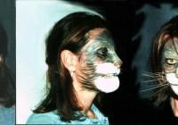 gatto - mosaico